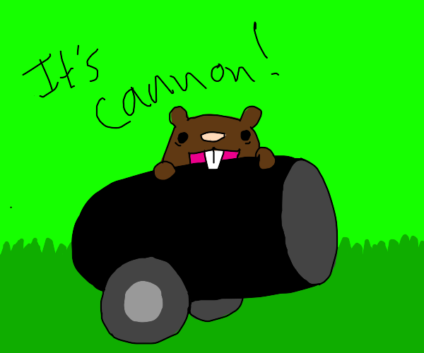 beaver eating a cannon
