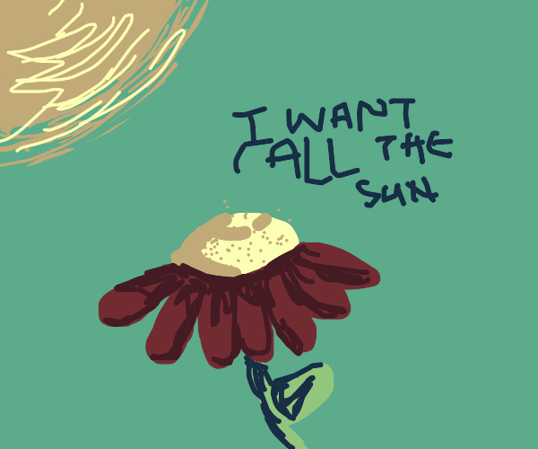 Flower wants ALL the sun