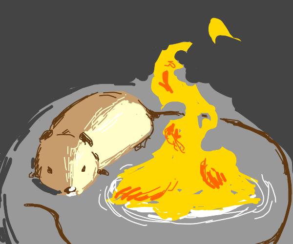LoOoOoOoOng tailed mouse by a fire