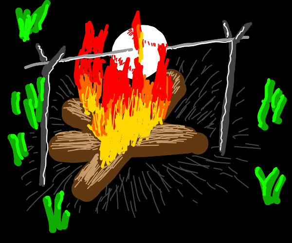 Roasting baseball in fire from firewood