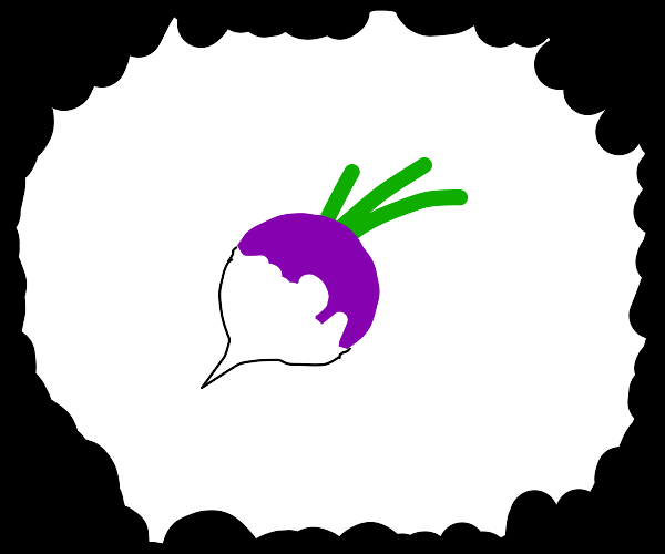 a turnip (i think)