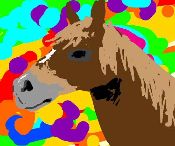 Horse does drugs