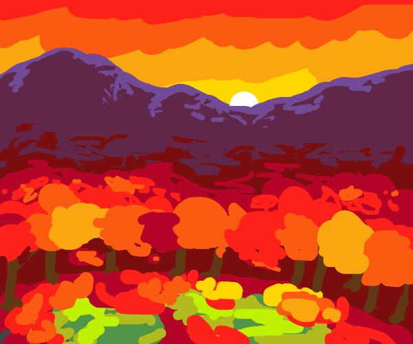 Autumn Forest Glade