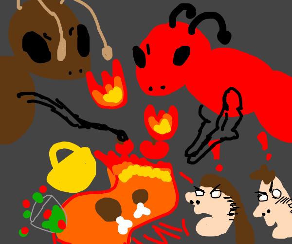 fire ants ruin picnic