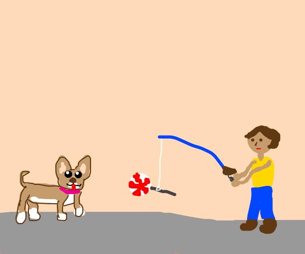 Hombre atrae con una paleta a un perro