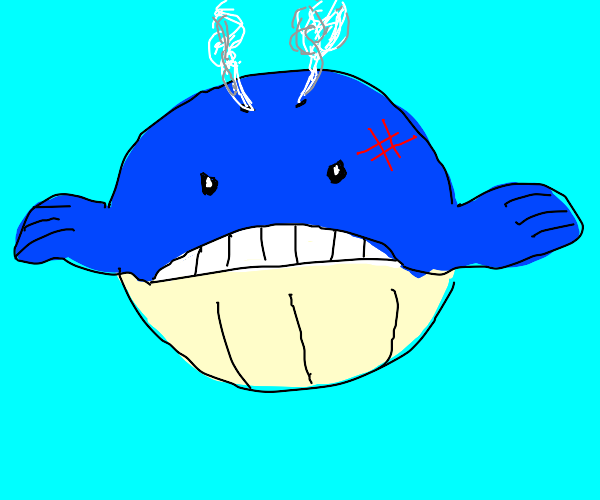 A mildy angry looking whale