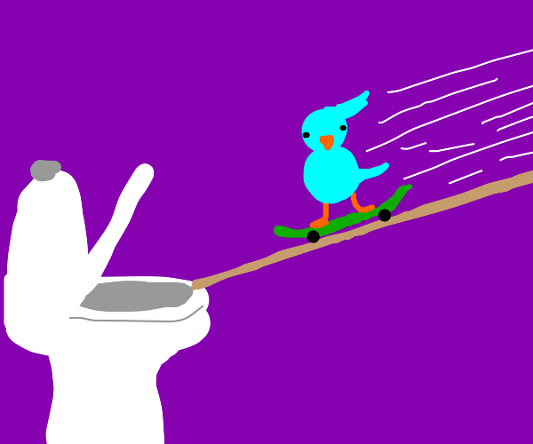 Avian on skateboard goes down hill into a loo