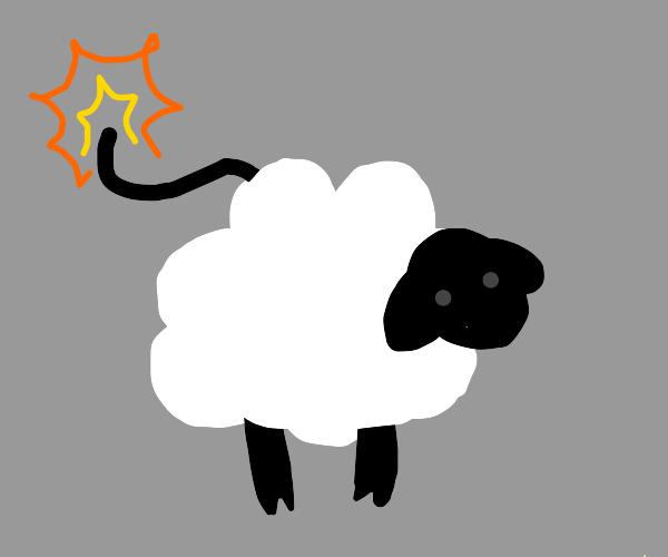 Sheep bomb