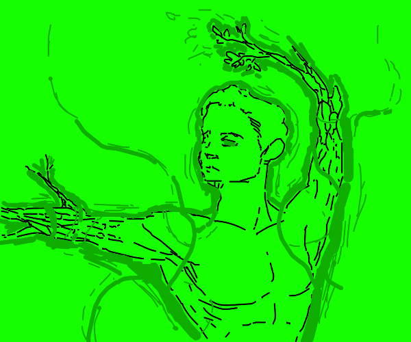 Guy with branches for arms