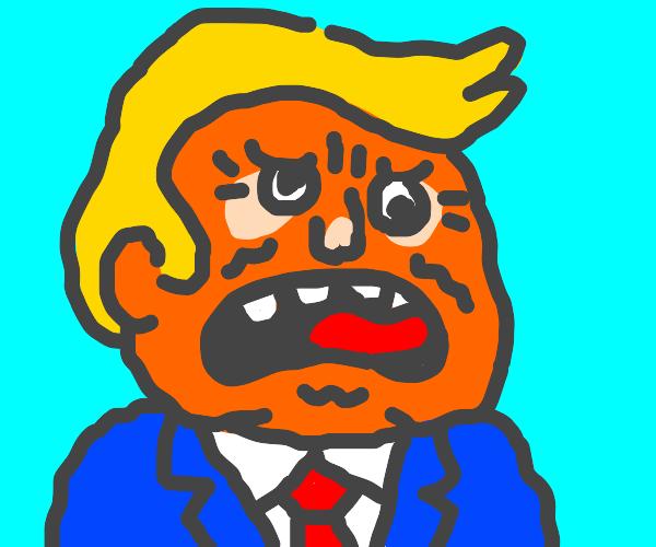 Orange Doofus