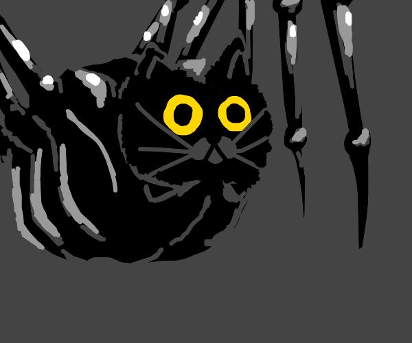 Angry Cat-Spider Hybrid (Spoopy)