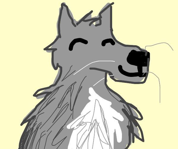 Wolf be floofy