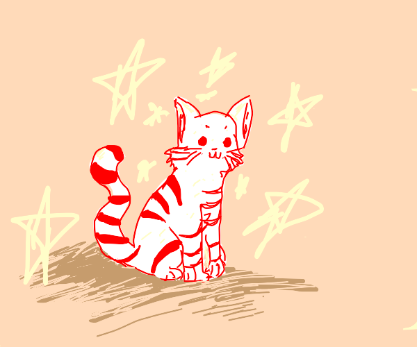 Candy cane cat
