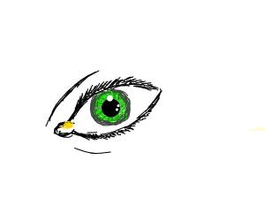 an eye with a huge eyebooger