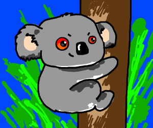 Red-eyed koala climbing tree