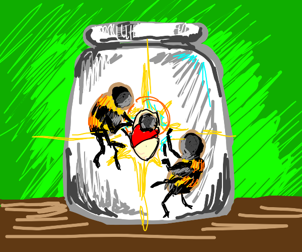 holy bee is in a jar