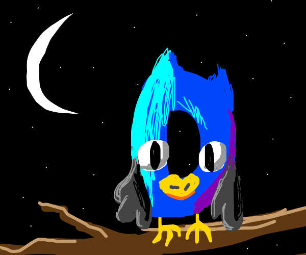Owlception