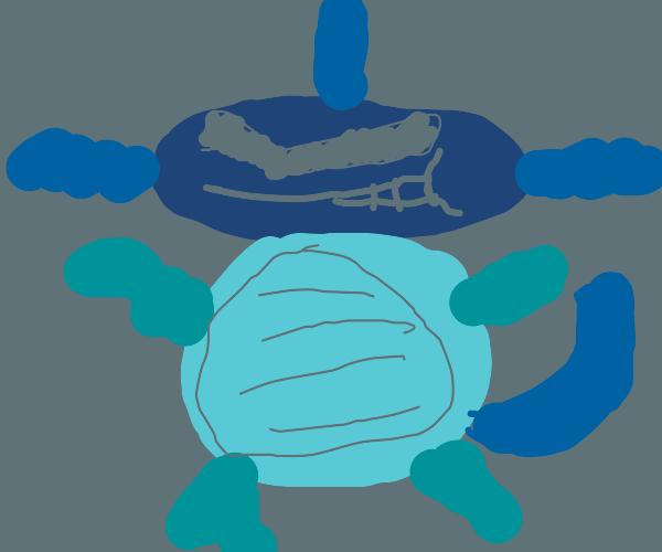 Wartortle (Pokémon)