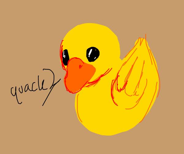 Of duck