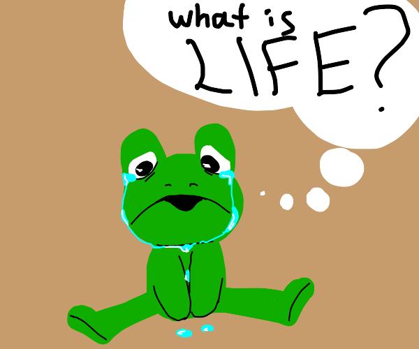 Sad frog questioning life