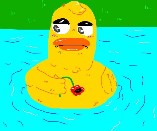 Very nice duck
