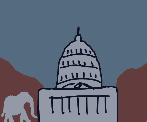 Elephant in Washington dc