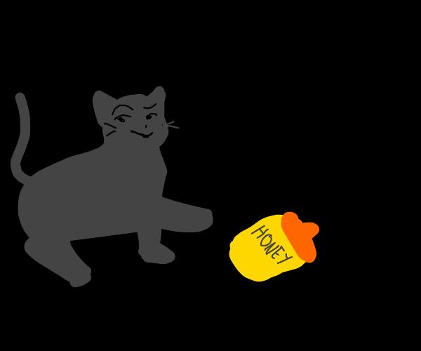 Cat kicks your honey jar, smugly.