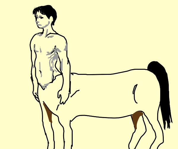 A centaur.