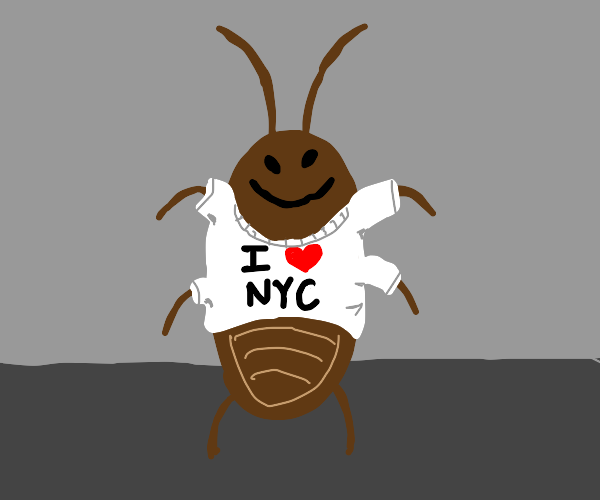 cockroach with a shirt