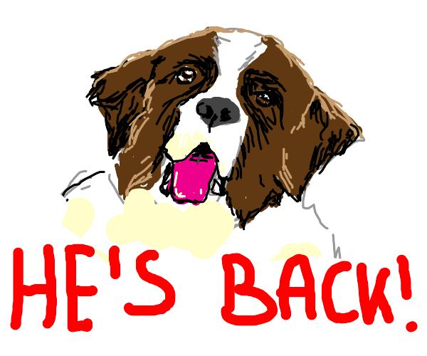 Beethovens back!