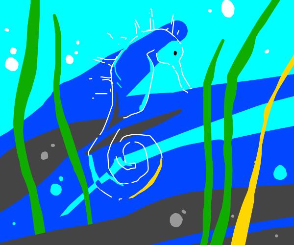 Translucent seahorse