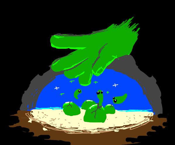 Green hand hatches its babies underwater