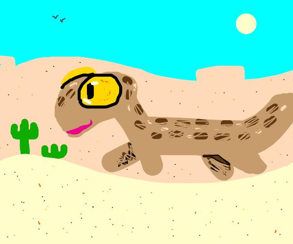 cute sandy gecko