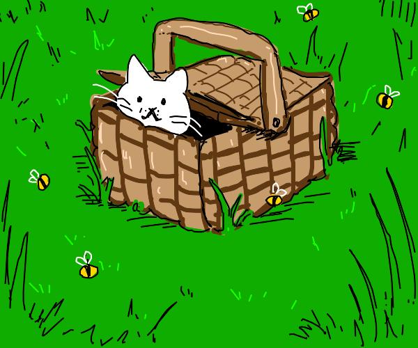 Cat in a picnic basket