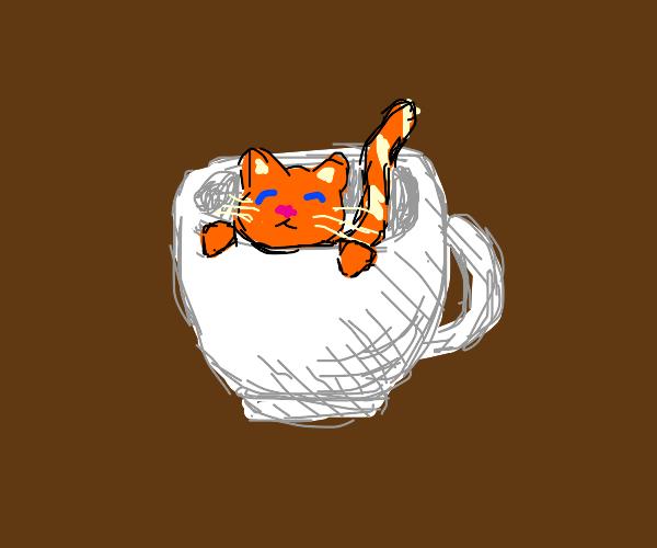 Tiny cat in a tea cup