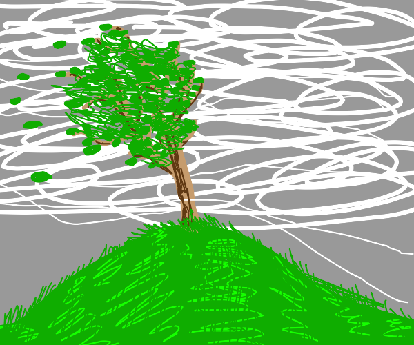 Tree on a windy day