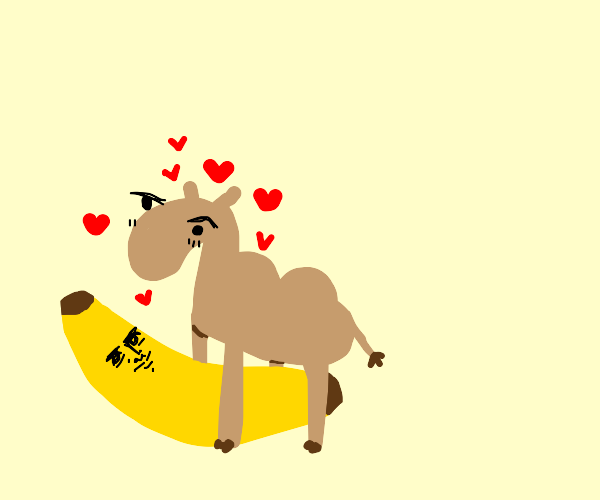 The camel loves to cuddle its giant banana.