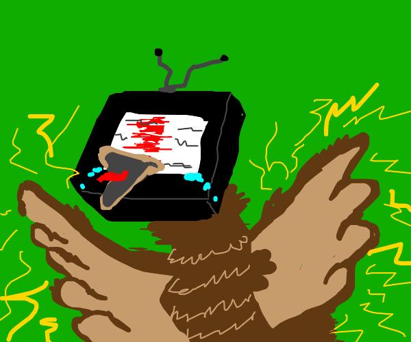 A tv bird hybrid gets shocked