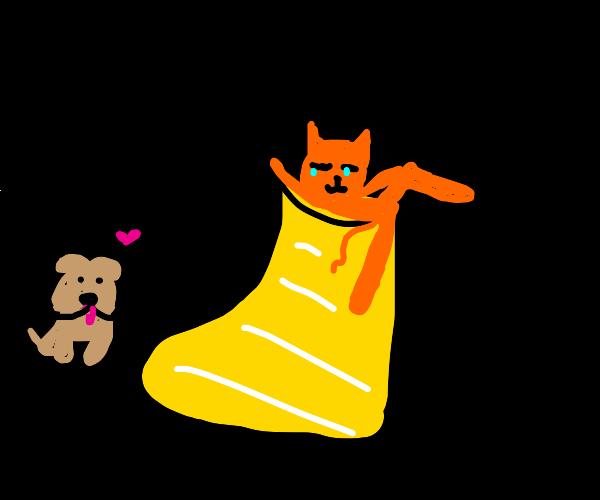 Cat in a sock seduces dog