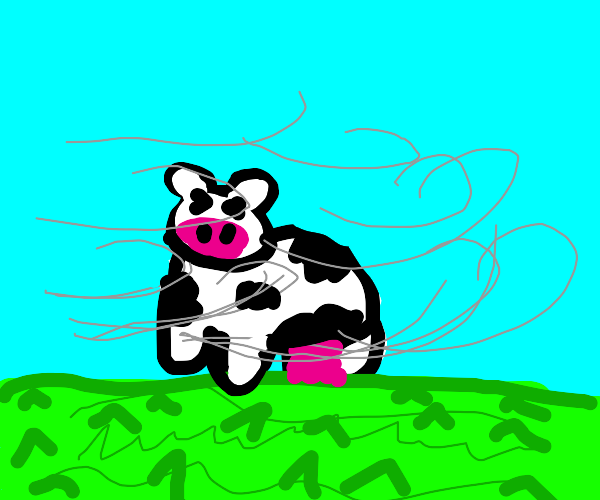 a cow in the wind