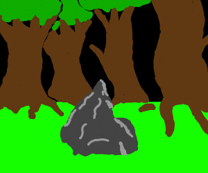 boulder in the forest
