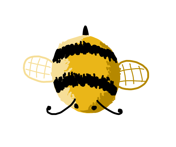 Top view of bee