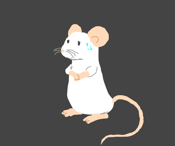 Worried mouse