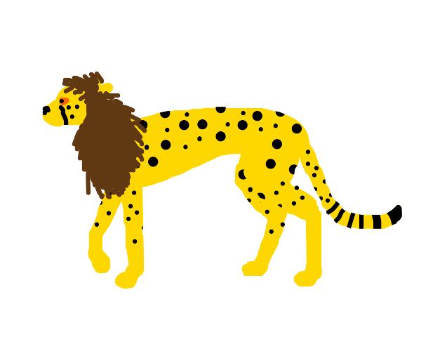 Cheetah Lion