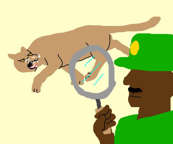 Cougar Inspector