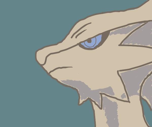 reshiram's (pokemon) head