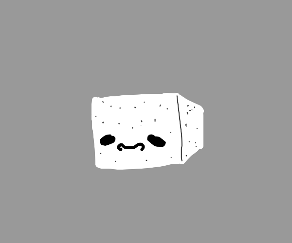 a dotted cube of tofu