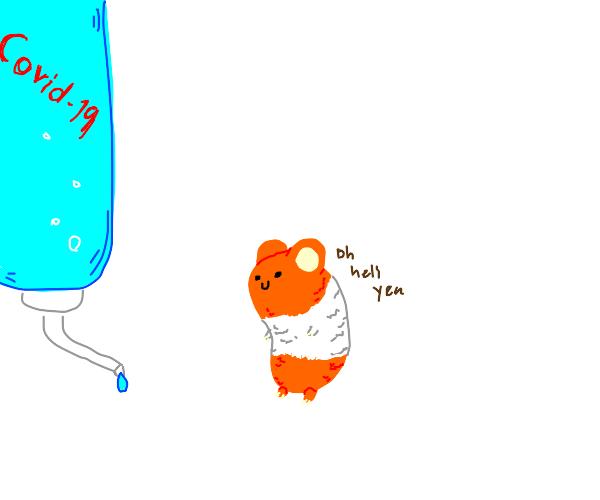 Hamster drinking bottled corona virus