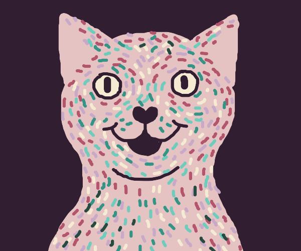 Cat with sprinkles hair