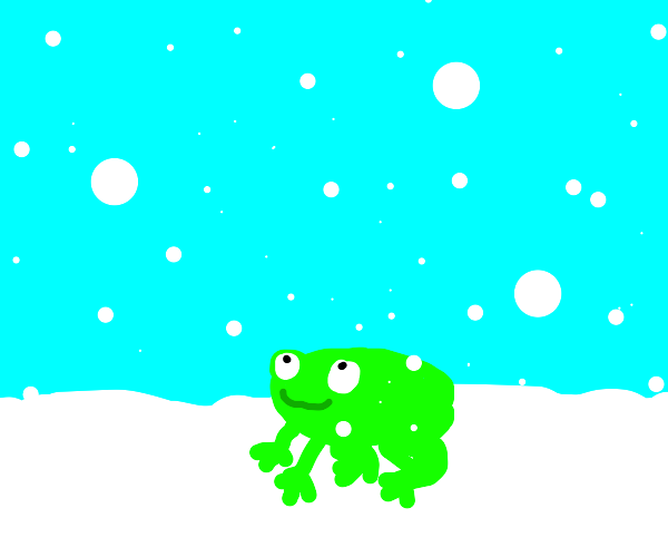Frog happy with snowfall.